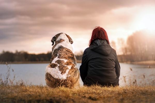 ragazza e cane guardano il tramonto