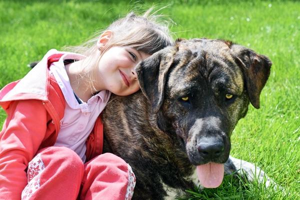 bambina con cane grande