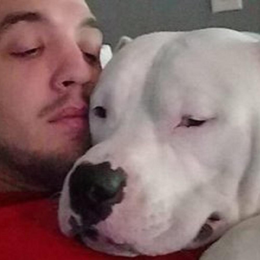 Per salvare il suo cane l'uomo mette in vendita la sua auto