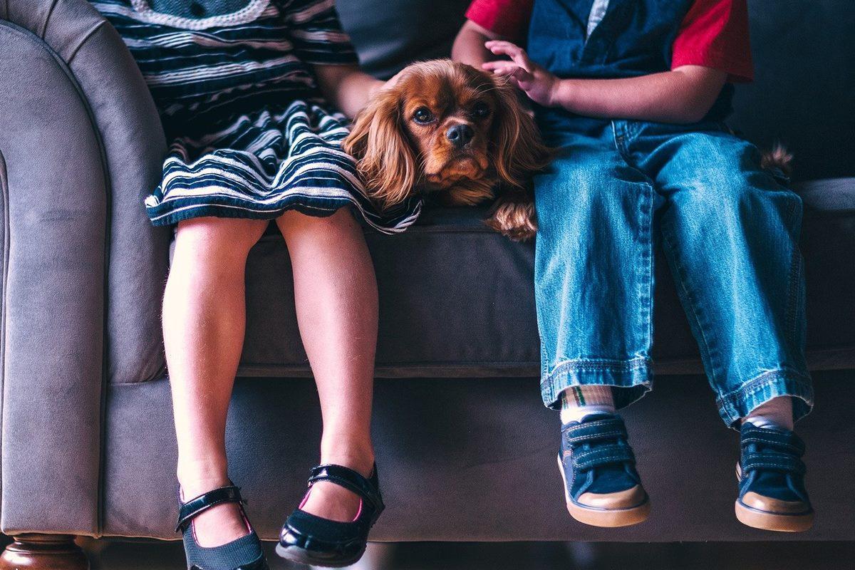 bambini sul divano con il cane