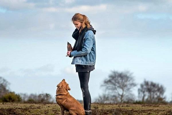 insegnare al cane sordo a venire