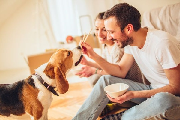 coppia dà da mangiare a cane