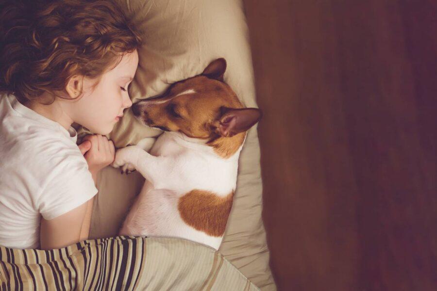 cane dorme con bambina