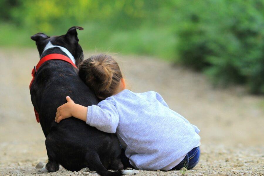 cane e bimba di spalle