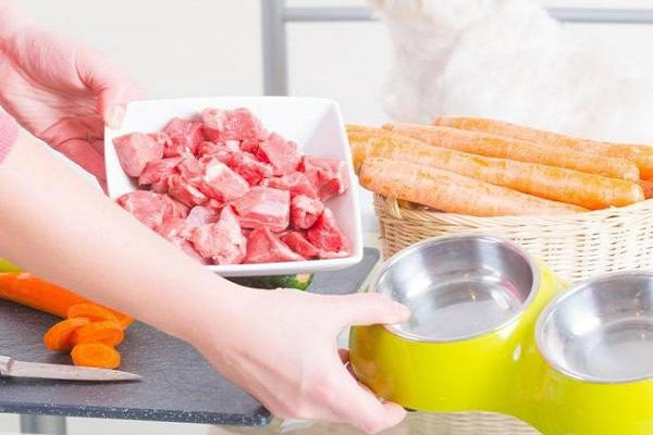 carne cruda nella ciotola del cane