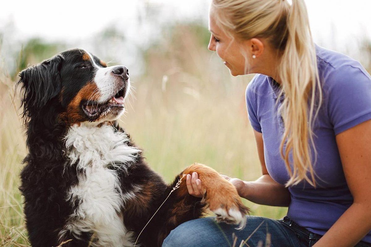 ragazza bionda che tiene la zampa a un cane