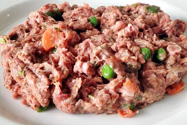 tartare di carne cruda per il cane
