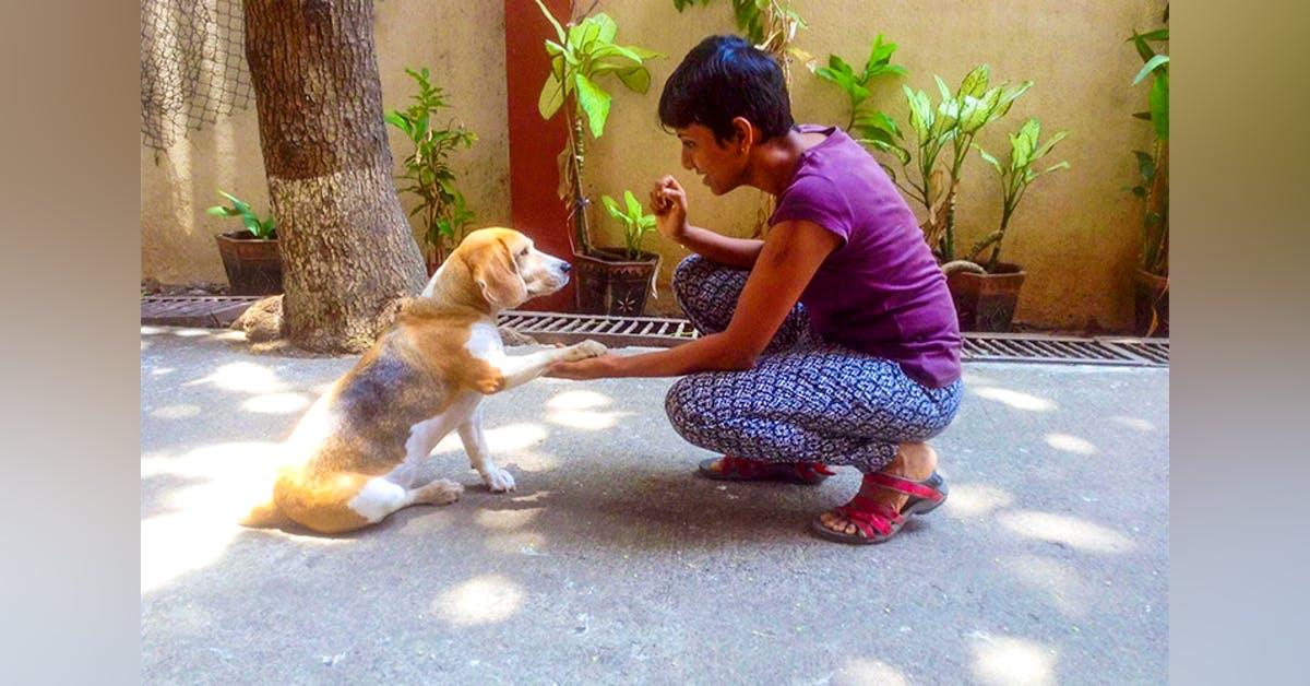 educazione canina con bimbi