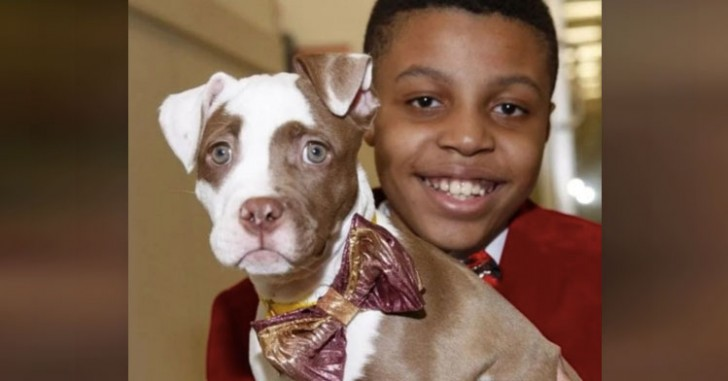 Cane con un bambino