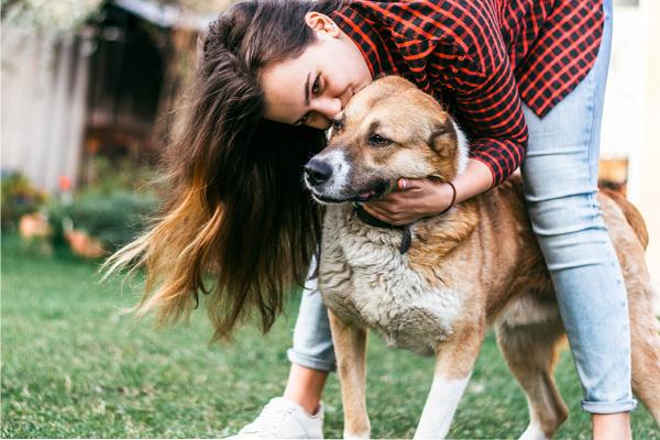 Comando di richiamo per il cane perfetto: ecco come far tornare subito Fido