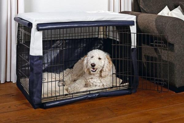 cane usa kennel come cuccia