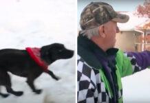Il cane Midnight con il suo proprietario