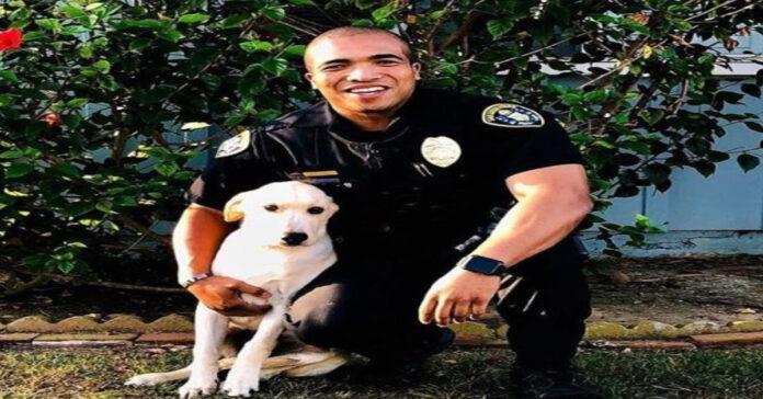 Il cane Victor con il suo proprietario