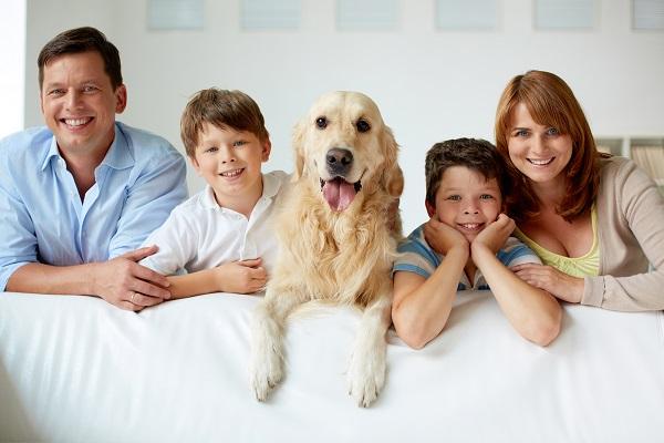 cane Golden retriever con famiglia
