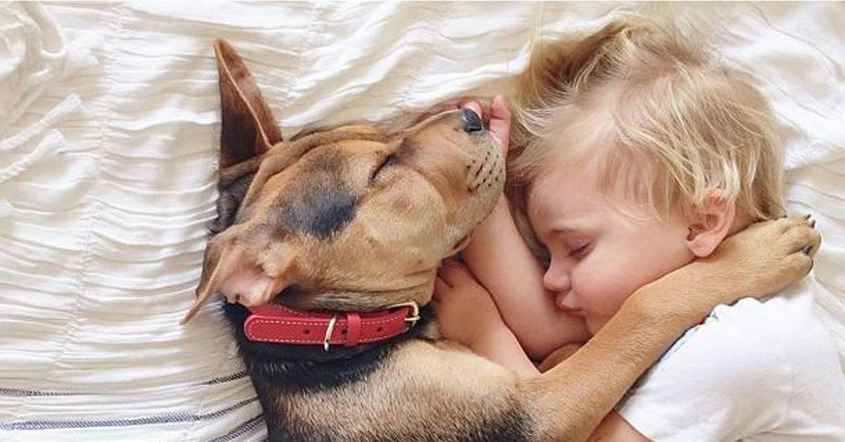 cani capiscono la differenza tra adulti e bambini