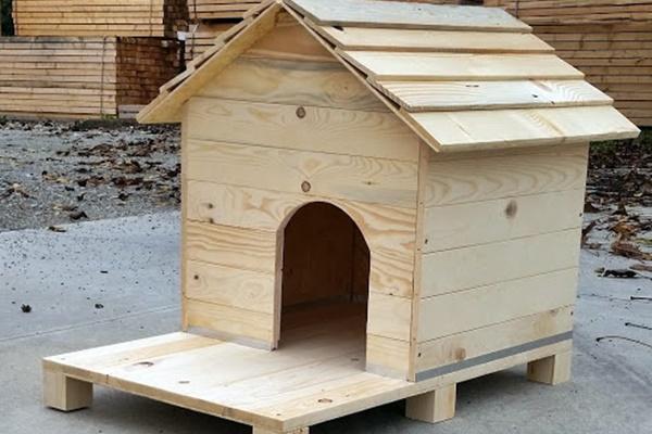 Come costruire una cuccia per cani comoda e calda