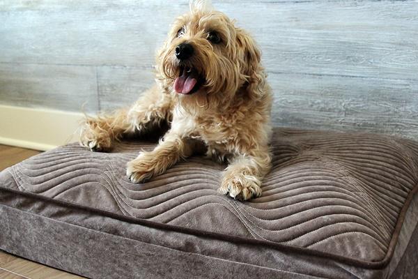 letto ortopedico per cani