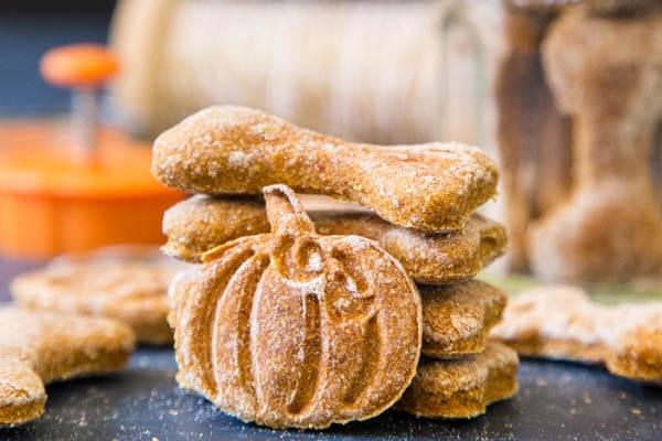 Dolcetti di zucca e formaggio per cani: lo snack ideale per Fido
