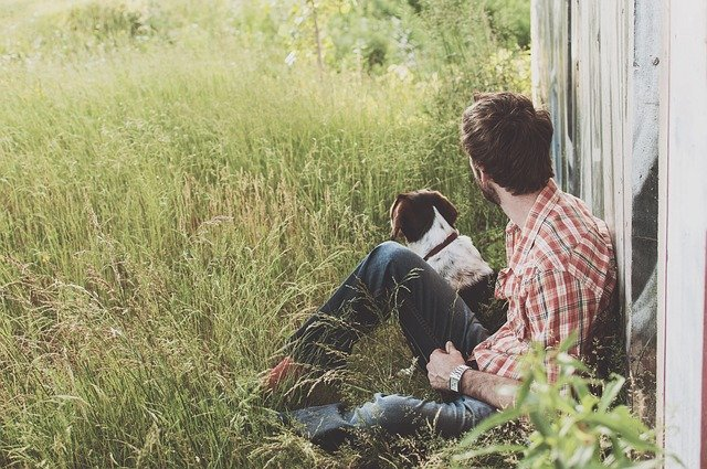 Connessione tra cane e umano: quanto è forte (e come capirlo)?
