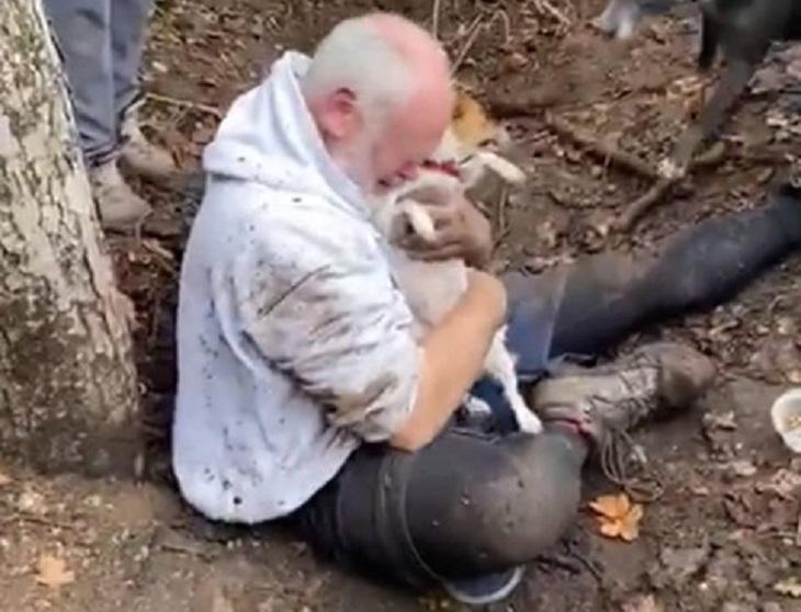 Cane salvato dopo esser caduto nella tana di una volpe