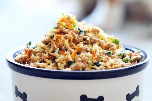 Pasticcio di tacchino e verdure per cani fatto in casa: la ricetta