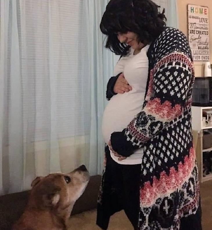 Il cane rimane in vita abbastanza a lungo da incontrare la piccola neonata