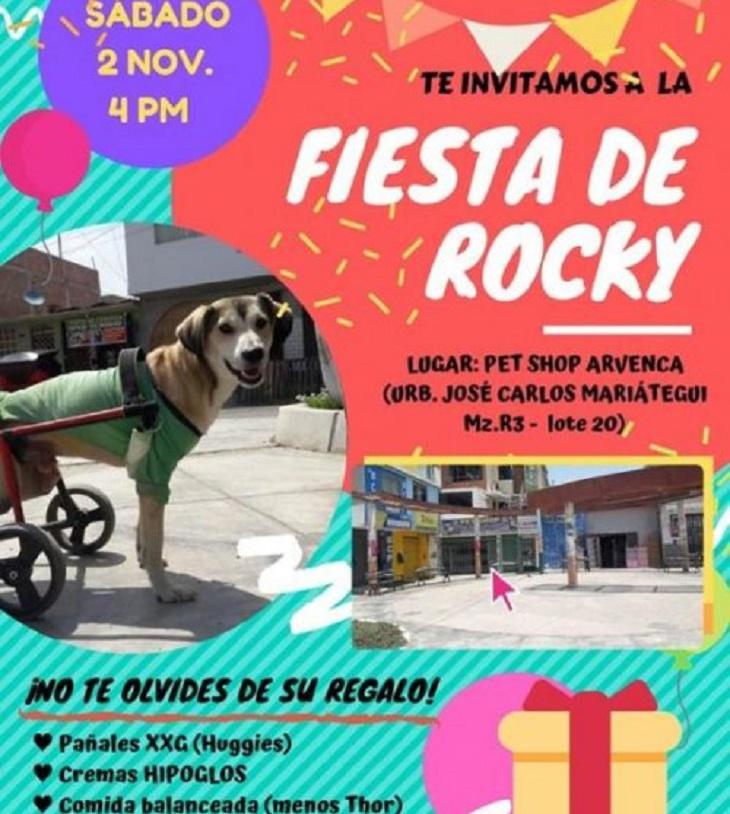 rocky-festa
