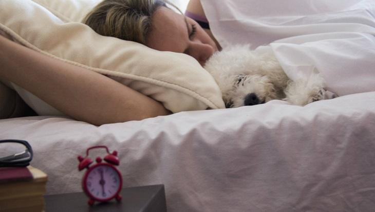 La scienza lo conferma, dormire con un cane migliora la qualità del sonno