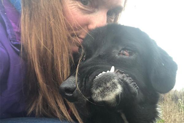 Cane con malformazione al muso