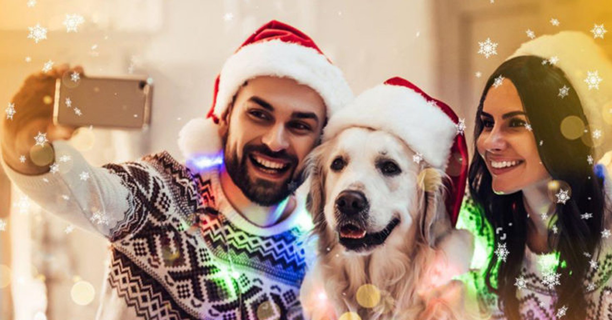 Cane in famiglia per Natale