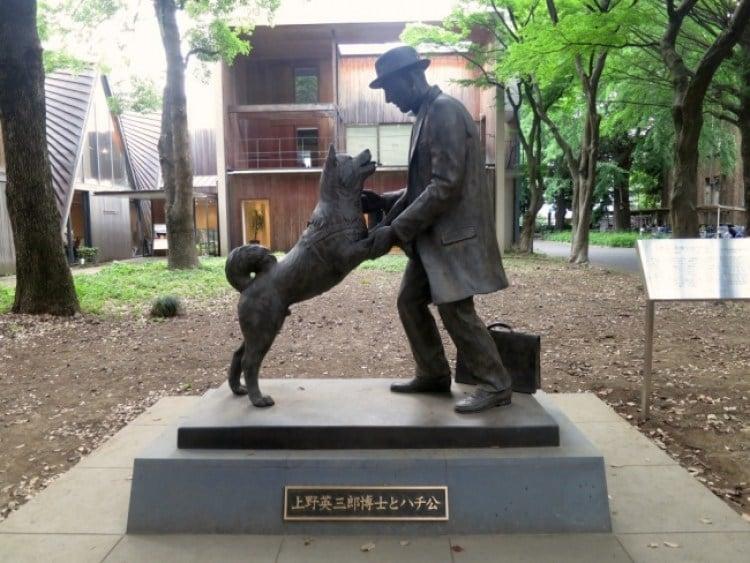 cane Hachikō