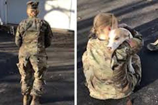 Cane che abbraccia la proprietaria