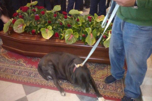 Cane al funerale del proprietario