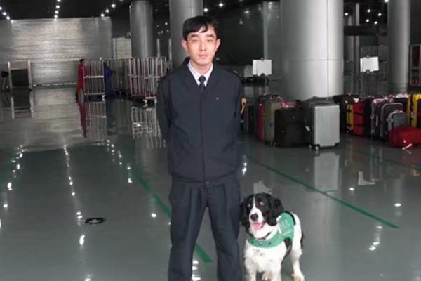 Cane in un aeroporto