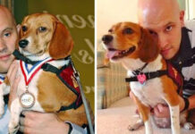 Storia del cane Belle