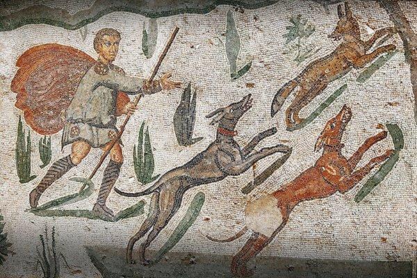 cani da caccia nell'antichità