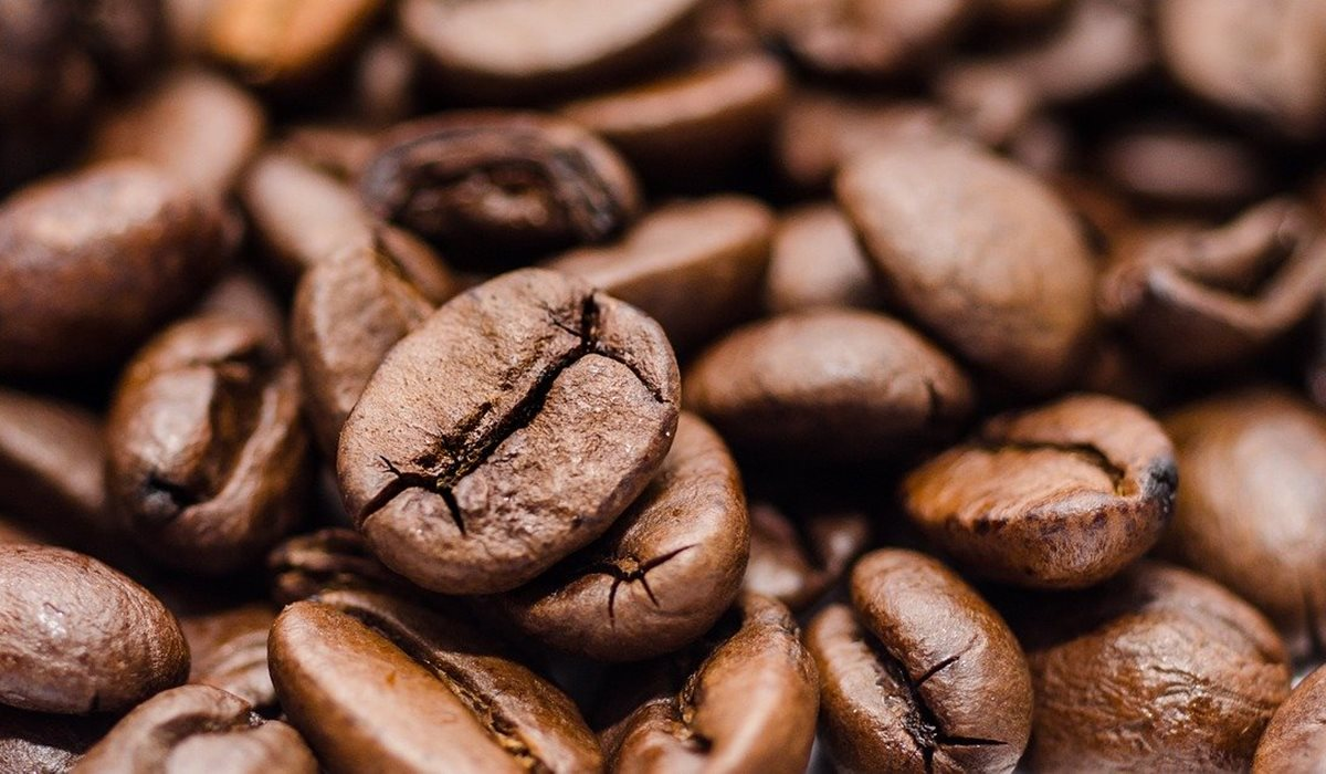 Avvelenamento da caffeina nel cane, cosa bisogna fare