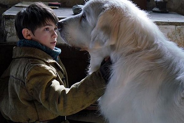 attore e cane di belle e sebastien
