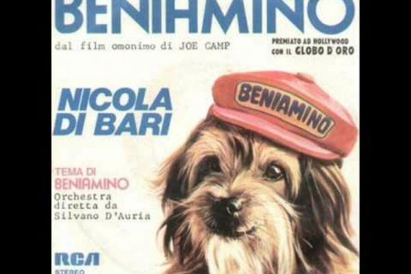 Ricordate Beniamino? Ecco tutta la verità sul cane del film del 1974