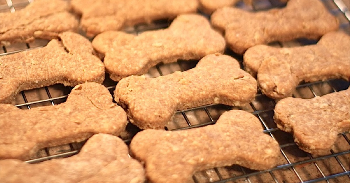 biscotti per cani su griglia