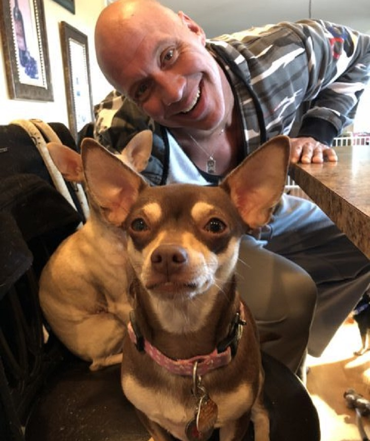 Cani in seria difficoltà salvati da un uomo dal cuore spezzato