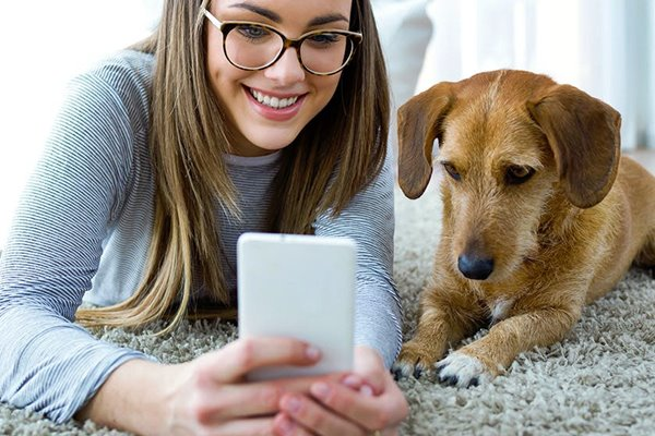 cane e smartphone