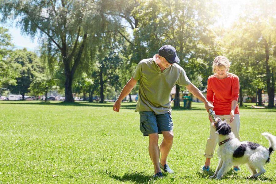 cane al parco con i padroni