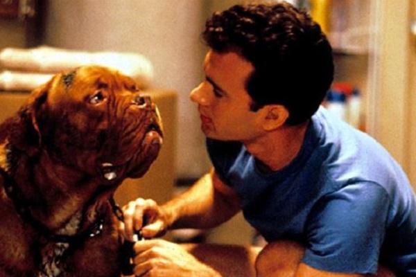 scena di turner and hooch con cane