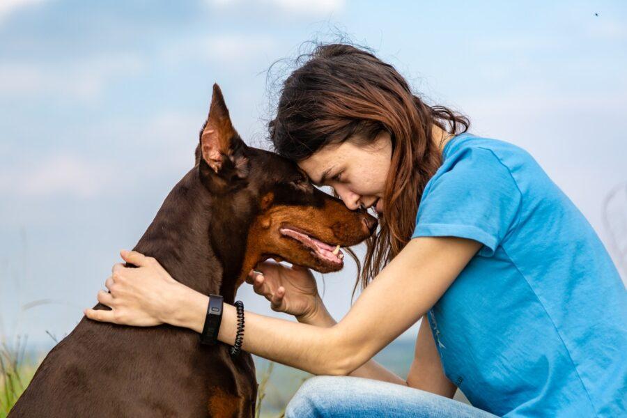 cane che ama la sua padrona
