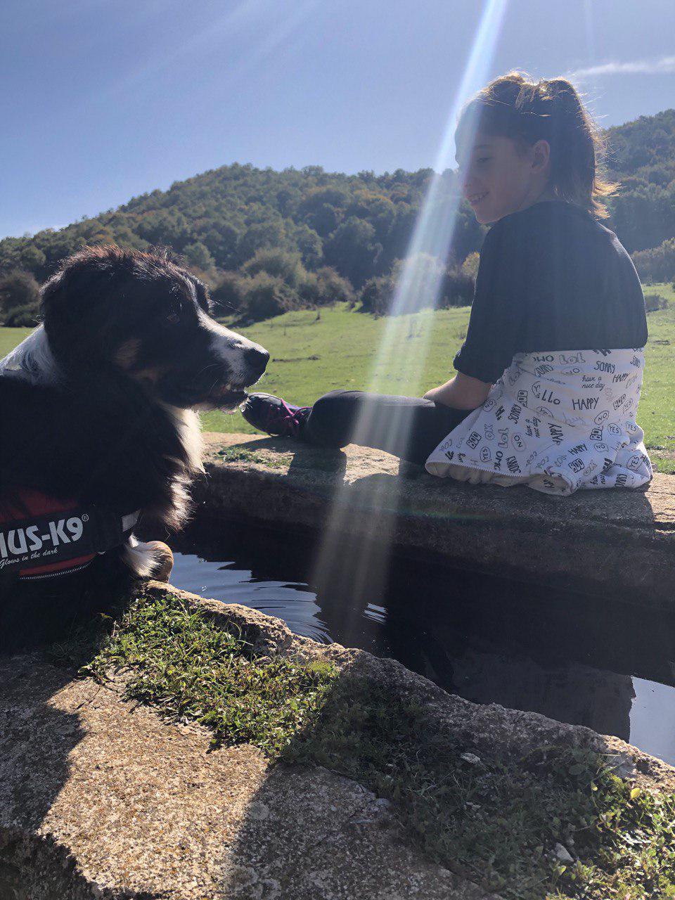 Felici insieme: la prevenzione dei nostri cani prima di tutto