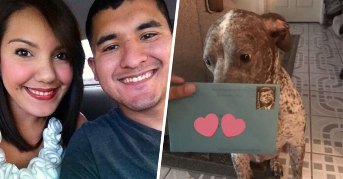 Cane con lettera d'amore
