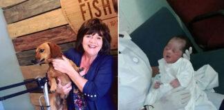 Cane che ha salvato un bambino