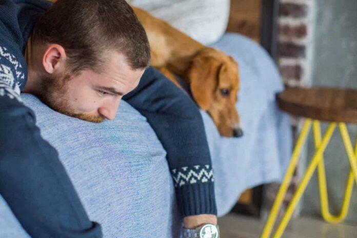 cane contro l'ansia