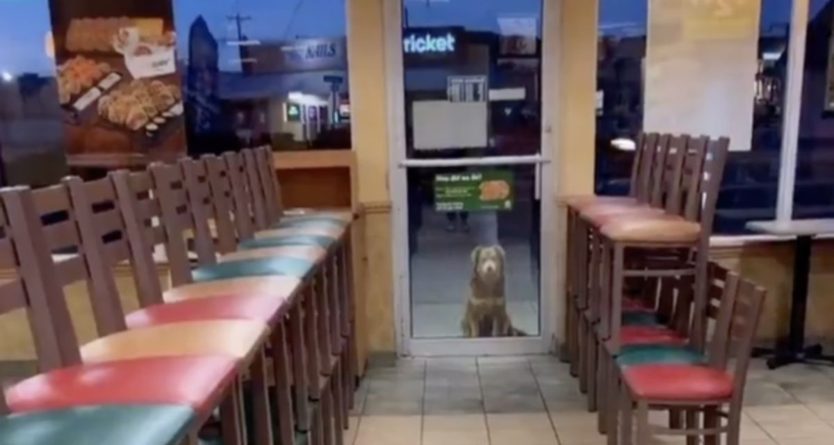 Subway Sally